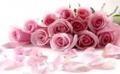 Intencje Róż Różańcowych na Miesiąc Styczeń